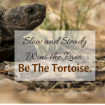 The tortoise and the hare. Read this story to motivate your band students!